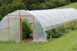 The high tunnel gives gardeners more options during the growing seasons.